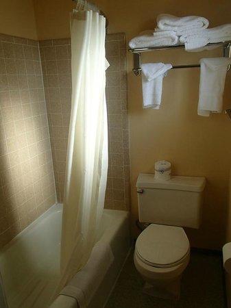 White Buffalo Hotel: La douche et le wc
