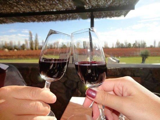 Bodega Melipal: Brinde com vinho de sobremesa
