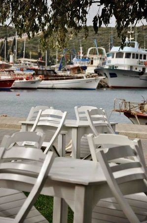 Teos Pension : Chairs and the sea