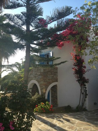 Naxos Holidays Bungalows Apartments: Mooie bomen en planten