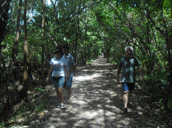 Coco Park : Trilha do Cocó