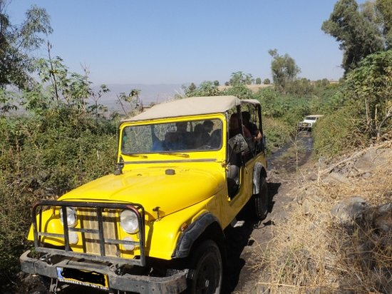 Galilee Jeep : Off road Golan Heights