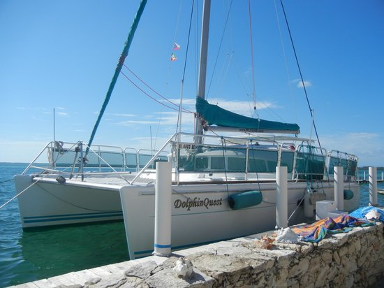 WildQuest: awesome boat