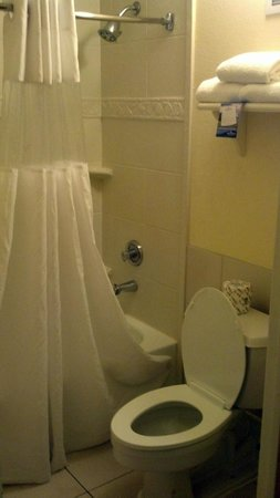 Baymont Inn & Suites Celebration: Bathroom