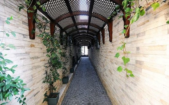 Cozy Flats : entrance