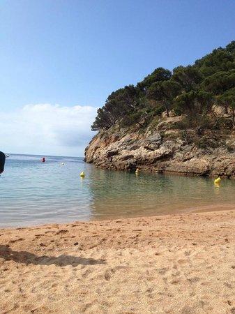 Playa Grande: Praia de águas limpas e calma