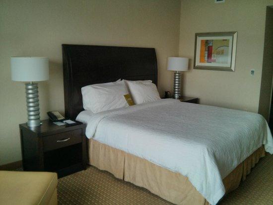 Hilton Garden Inn Arlington/Shirlington: King size bed
