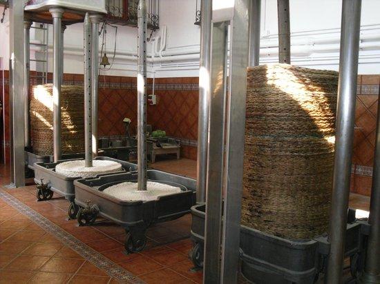 Nunez de Prado- Fabrica de Aceite de Oliva Ecologico: Traditionelle Pressung
