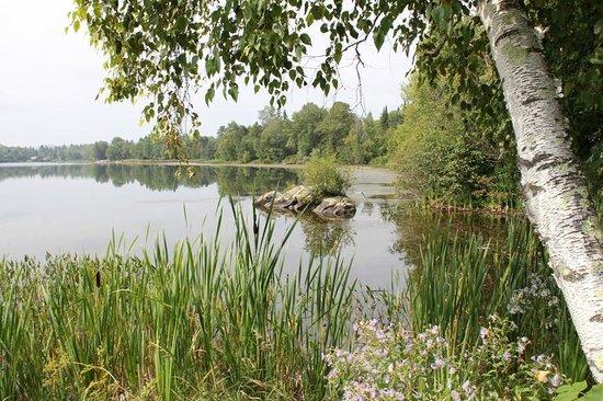 B&B Les Dames du Lac: vue d'une partie du lac