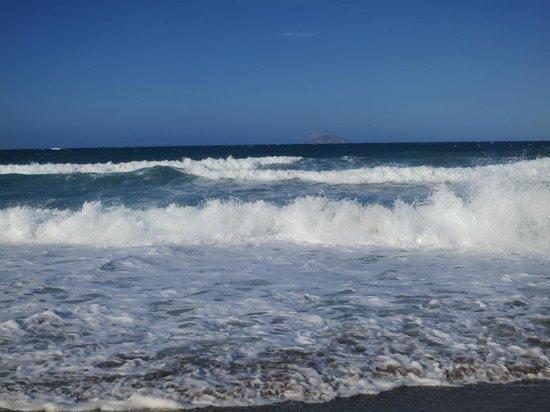 Alexander Beach Hotel: Пляж