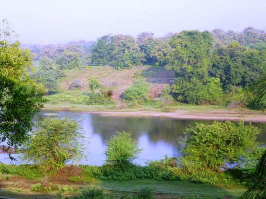The Gateway Hotel Gir Forest : River view from the room