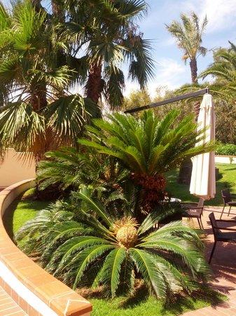 Hotel Arbatasar : giardino