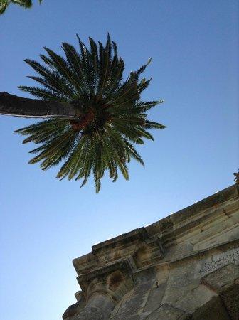 Pestana Cidadela Cascais: The vivid blue sky and the palms