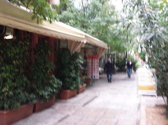 Epidavros Hotel: Pedestrian area outside the entrance
