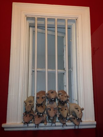 C is for Cookie: Their perfectly clean bathroom had these stuffed animal rats in the window - hilarious and cleve