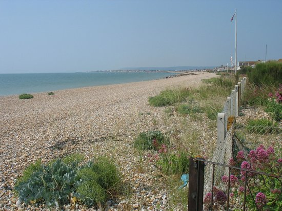 The Limes Bed & Breakfast : Pevensey Bay Beach