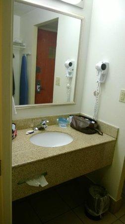 Best Western Plus Atlanta Airport-East: Outer bathroom area