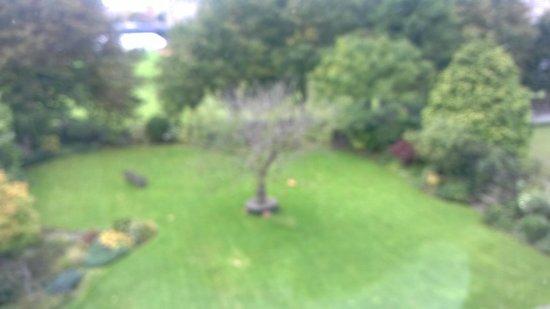 The Ayrlington : The garden