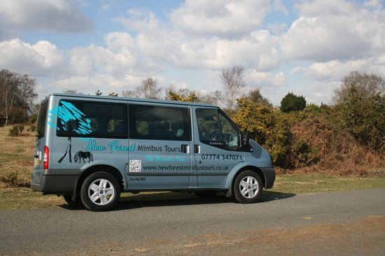 new forest minibus tour foto di new forest minibus tours brockenhurst tripadvisor. Black Bedroom Furniture Sets. Home Design Ideas
