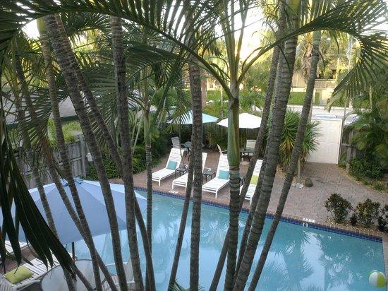 Las Olas Guesthouse @15th Avenue: The pool