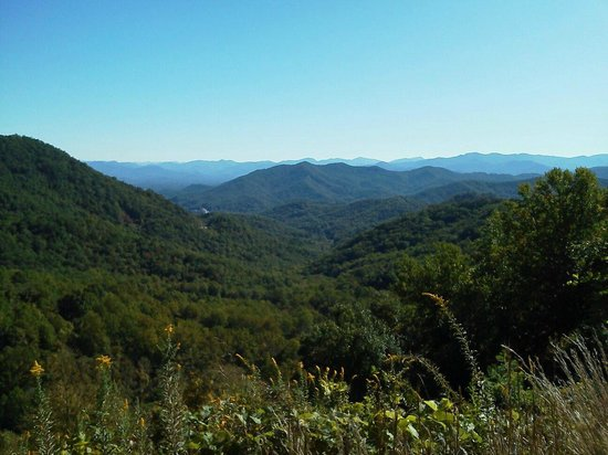 Cherokee National Forest: Boyd Gap