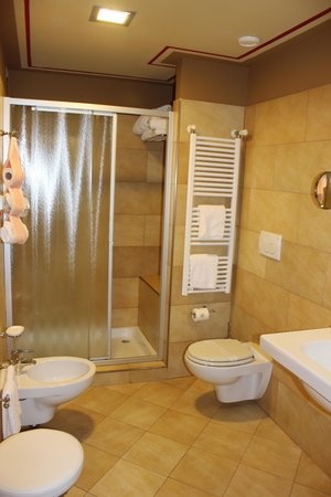 San Luca Palace Hotel: Guest shower room