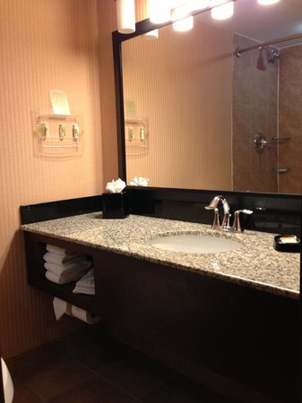 Holiday Inn Hotel Summit County: Bathroom