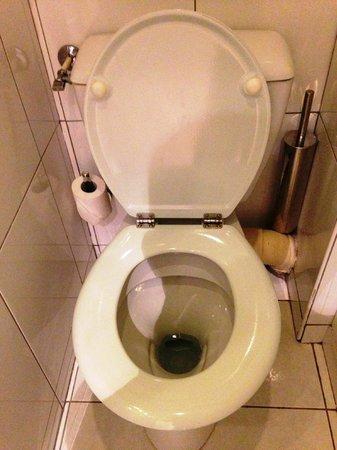 Hotel Corona Opera: トイレは普通の水洗トイレです