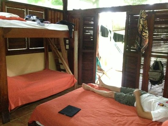 Funky Monkey Lodge : Beds.  Set of folding doors lead to your porch.  Hammock, table and pair of chairs on porch.