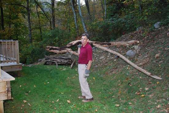 The Cabins At Crabtree Falls: I asked Jeff to get a log and he went medieval!