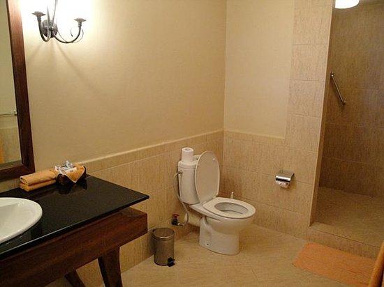 Ngorongoro Sopa Lodge: the bathroom of room 40