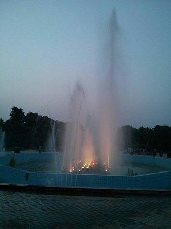 Parque Laisure Valley: Fountain