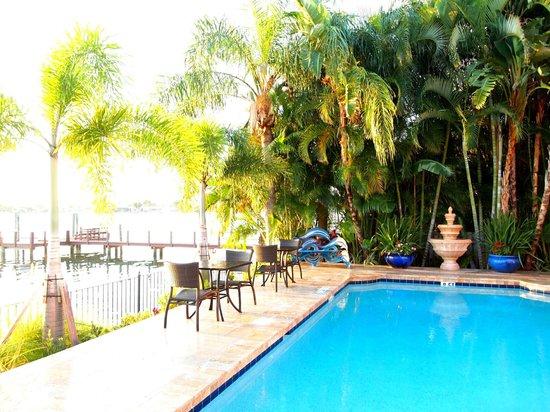 Pasa Tiempo Private Waterfront Resort: Pool Area