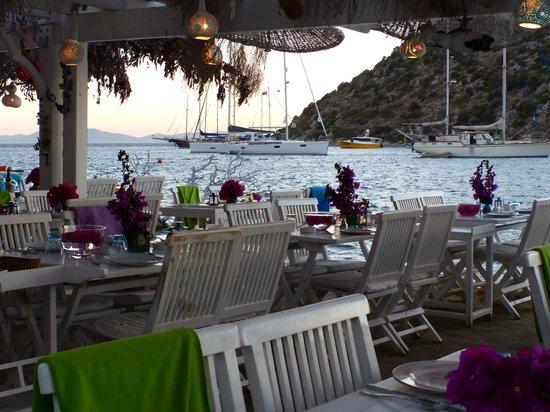 Mimoza Restaurant: Water views