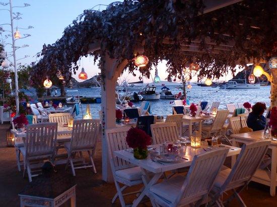 Mimoza Restaurant: Lovely design