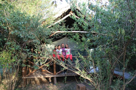 Kichakani Mara Camp: U live among the bush with plenty of animals sound at night