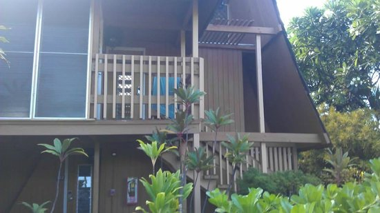 Hotel Molokai: Our building
