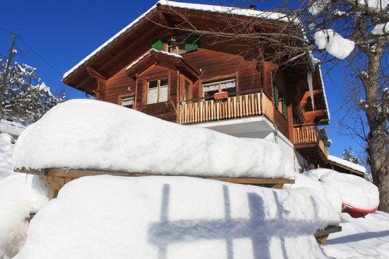 Chambres d'hotes Chalet Le Rucher: hiver