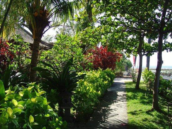 North Bali Beach Cottages: Weg zwischen Strand und Bungalows