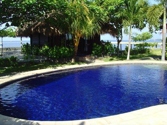 North Bali Beach Cottages: Pool, im Hintergrund Spa