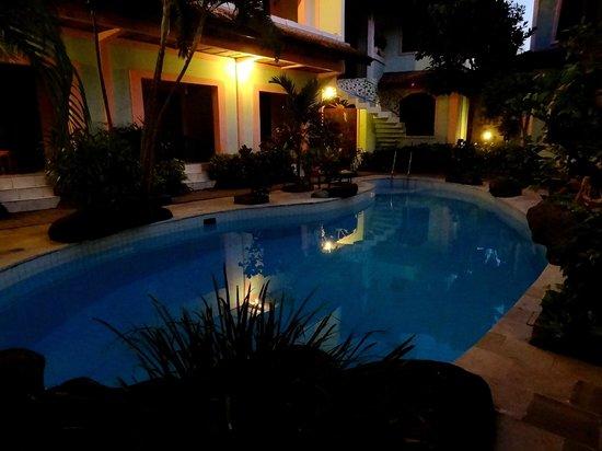 Villa Puri Royan: бассейн