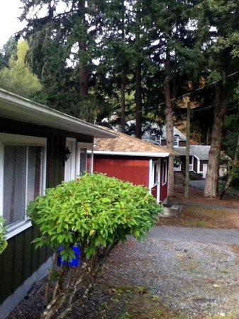 Malahat Bungalows Motel: view of cabins looking to office