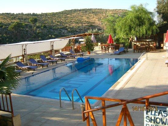Patara Delfin Hotel: Peaceful pool.