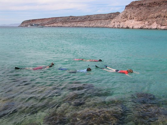 Panterra Eco-Expeditions - Day Trips : Snorkeling in a tranquil bay.