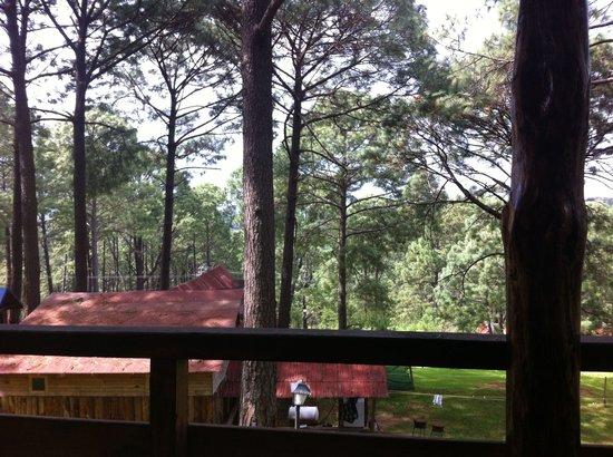 Pinos Altos: :: vista desde la terraza ::