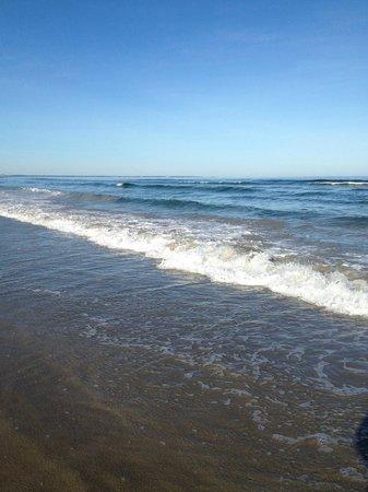 Ogunquit Beach : a september day on the beach......