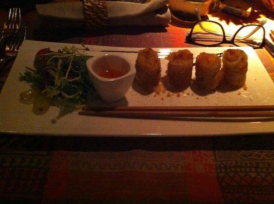 Restaurant Thierry Saveurs et Cuisine : Nems farcis aux crevettes