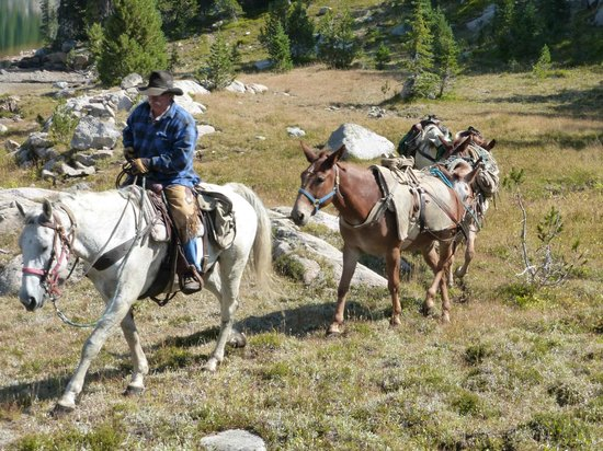 Skyline Guest Ranch and Guide Service: Vic Jackson, owner, pack trip in Beartooth Mountains