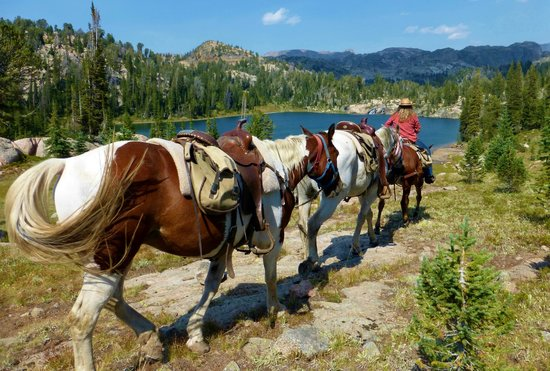 Skyline Guest Ranch and Guide Service : Skyline Guide Service horse pack trip into Beartooth Mountains