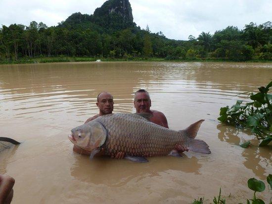 Gillhams Fishing Resorts: A world record carp